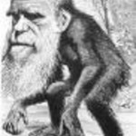 darwin_as_chimp